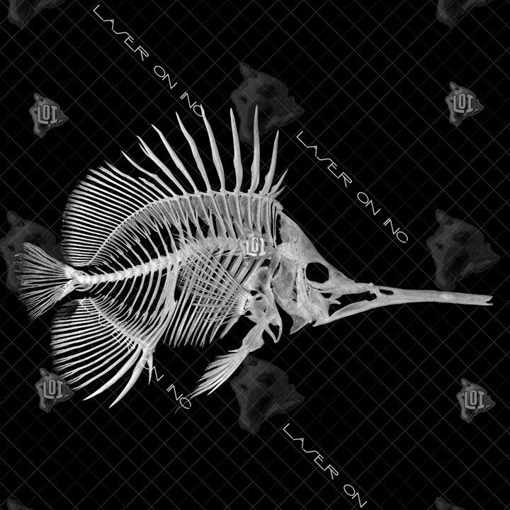 fishbone-12in - Laser On Inc