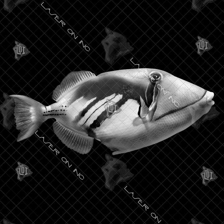 fish-humu-12in - Laser On Inc