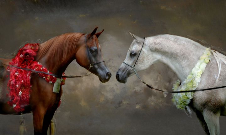The Two Horses of Love II - Prints Diary