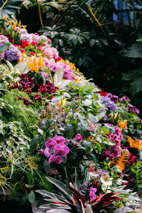 Floral Arrangement - Sarah M. Wells