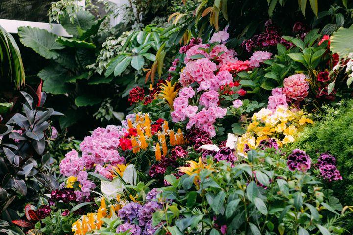 Floral Arrangement (Landscape) - Sarah M. Wells
