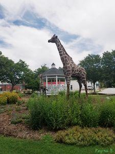 Garden Festival (Giraffes Art)