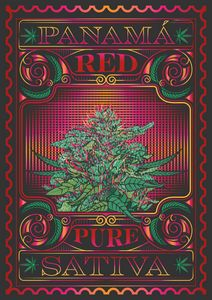 Passion Fueled Cannabis