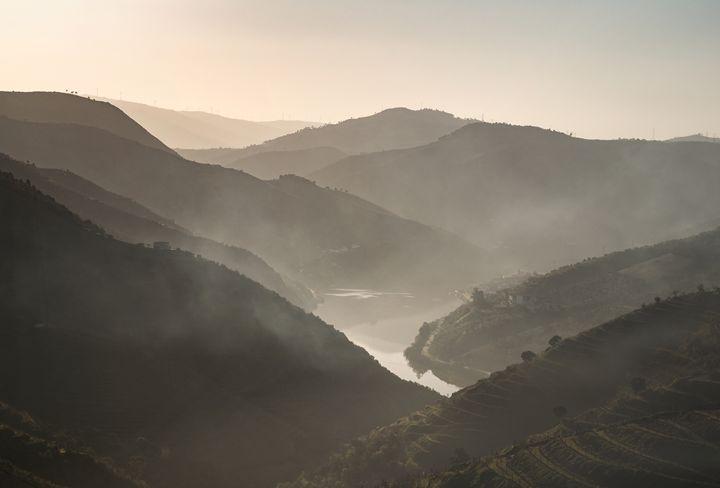 Vale do Douro - João Bizarro
