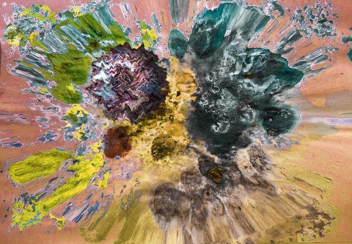 explosion - carole pruvost