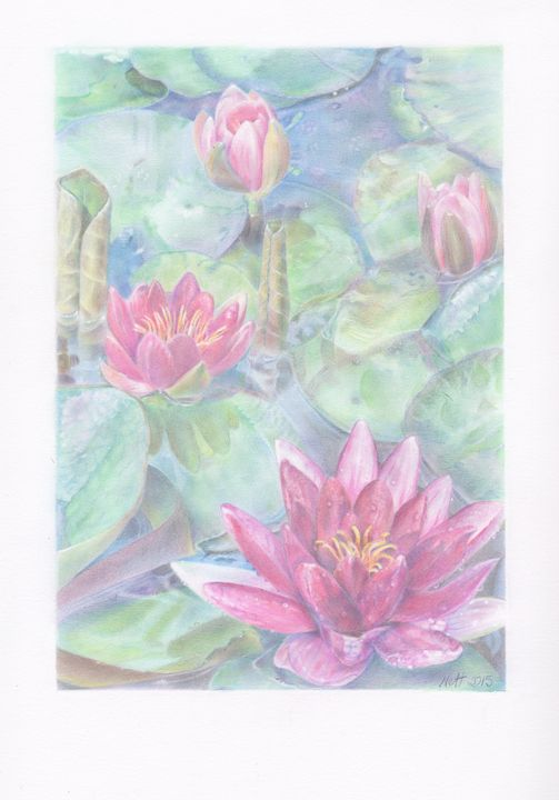 Water Lilies (with border) - Ryman-Art