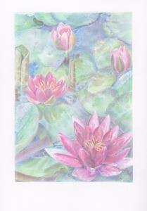 Water Lilies (with border)