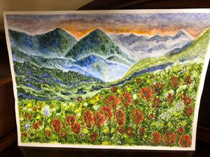 Rocky Mountain Lupine Beauty