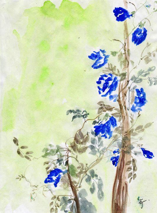 Clitorira blue flowers - Sweeping Girl