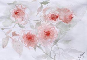 Healing roses