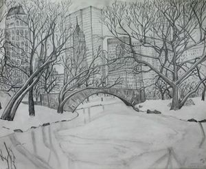 Central Park in winter. - Tom Carlson