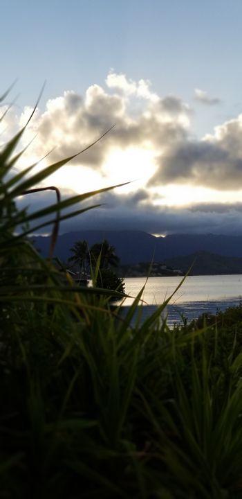 Hawaiian views - Sampooz.art