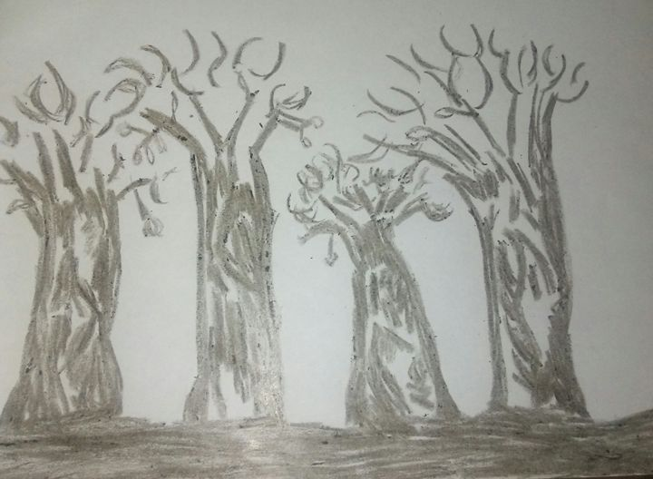 The rain forest - The scribbler's art
