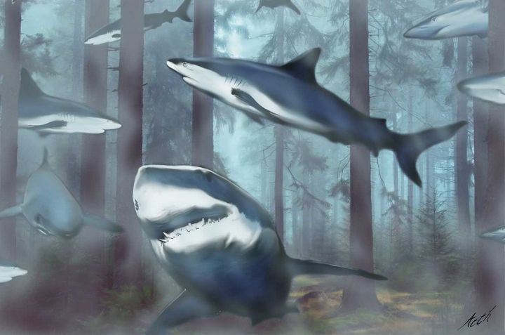 Sharks in the Woods - Aoth