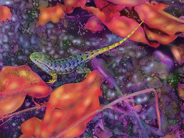 Lizard - Aoth