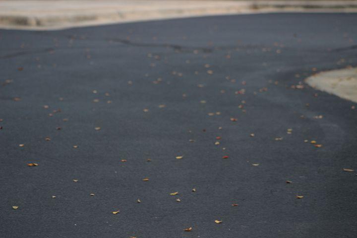 Road of Leaves - Jade Ellyette