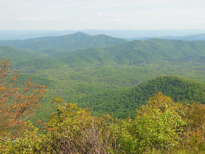 Blue Ridge Mountains - Jade Ellyette