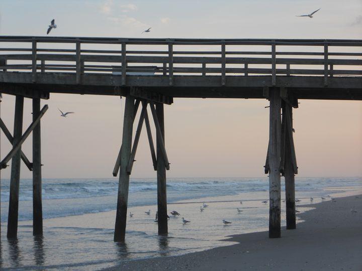 Seagull Pier - Jade Ellyette