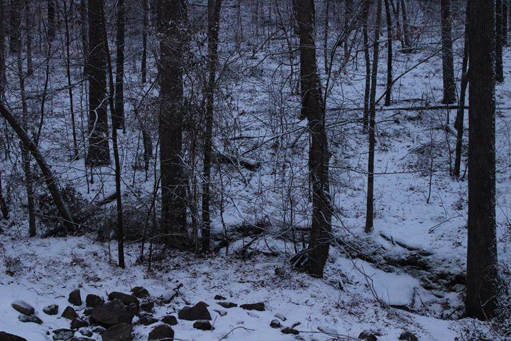 Winter Woods - Jade Ellyette