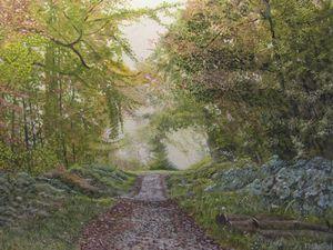 Bishopstoke Woodland path