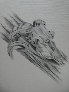 creepy skull drawing