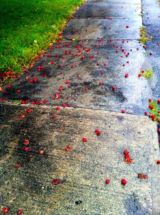 Summer Rain - Rebecca Neddo
