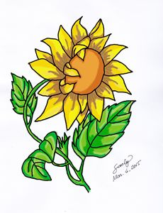 My Sunflower