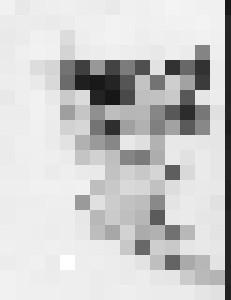Fairey - ArtistMichaelTodd
