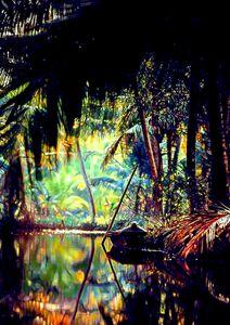 Everglades - ArtistMichaelTodd