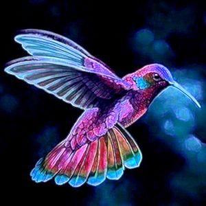 Hummingbird - ArtistMichaelTodd