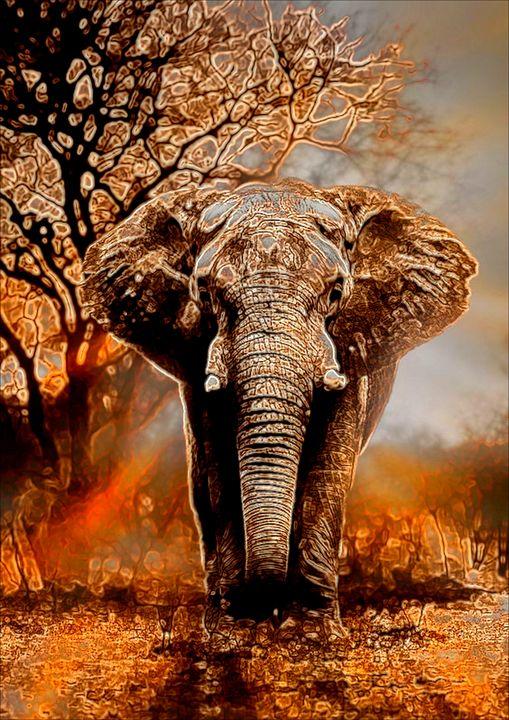 African Elephant - ArtistMichaelTodd