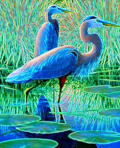 Blue Herons - ArtistMichaelTodd