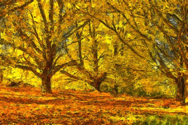 Oak Grove - ant36au