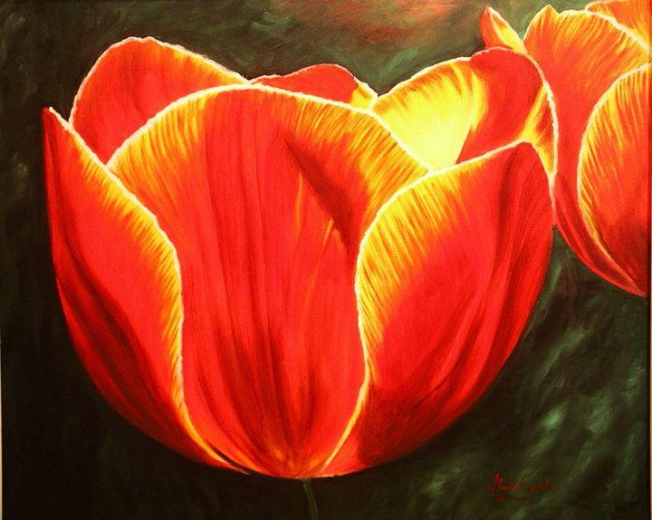 Tulipán - Megon Art