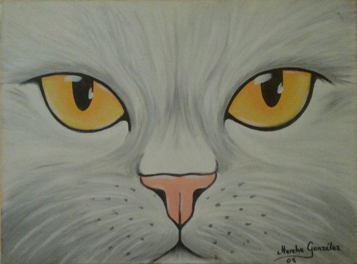 Gato Blanco - Megon Art