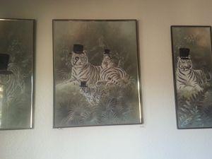 classy tigers