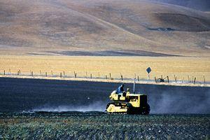 Farming The Fields
