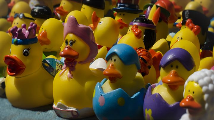 Marching To Your Own Ducky - Joie Cameron-Brown Photography