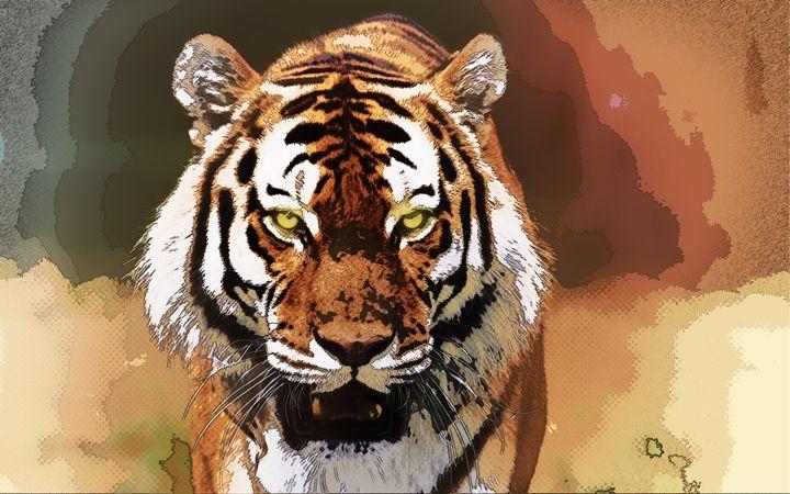 Tiger - Ancião