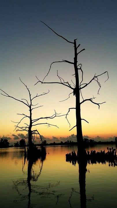 bayou sunrise - pace photography