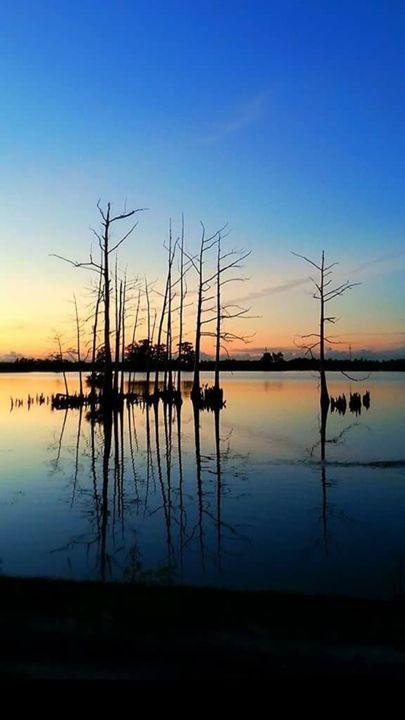 sunrise - pace photography