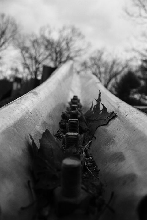 Leaves in Guardrail (BW) - MBenton Studios