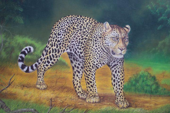 Leopard - lakshgallery