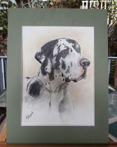 Dalmatian - Creative Art by Pat