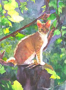 Sunshine cat 21,5Х29,5cm