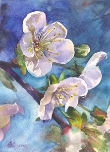 Cherry blossoms 21,5Х29,5cm