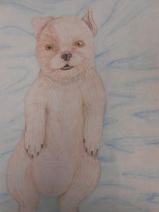 Chillin' Pup