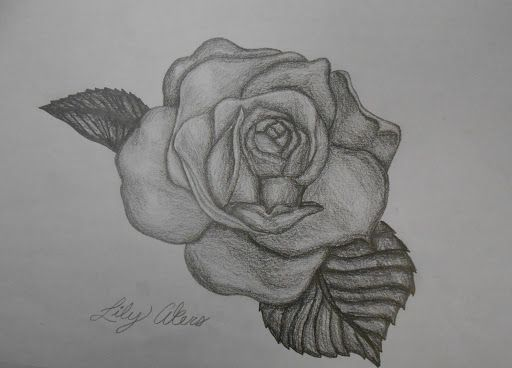 Graphite Rose - Lily's Art