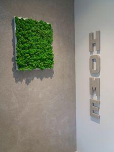 Natural moss art 3d - ABStyle Design