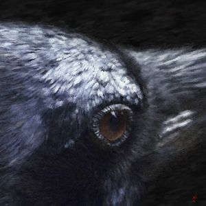 Raven - Joseph Heath